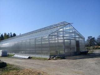 Växthus i enkelglas och poly